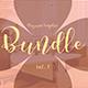 Multipurpose InDesign Magazine Template Bundle V.3