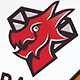 Diamond Dragon Crest Logo