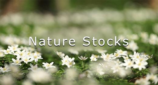 Nature Stocks