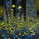 Fireflies Nature Orchestra