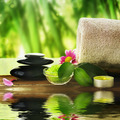 Spa Treatment - PhotoDune Item for Sale