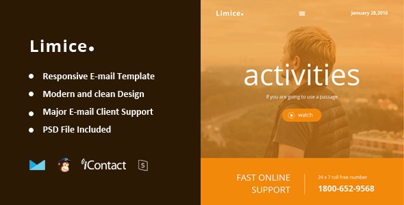 Limice - Responsive E-mail Template + Online Access