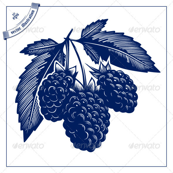 Graphic River Berries Bush Vectors -  Objects  Food 1489546