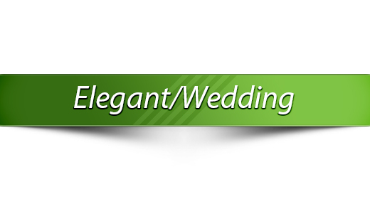 Elegant Wedding Slideshow Music