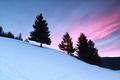 purple sunrise in winter mountains