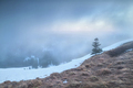 foggy sunrise on Feldberg mountain top