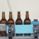 Automatic Line For Bottling Beer At The Brewery