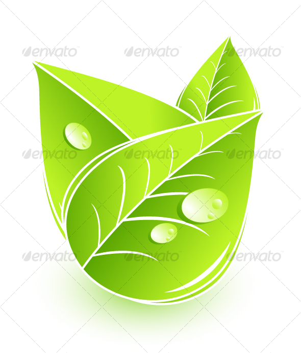 GraphicRiver Leaves composition 58928