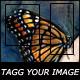 OpenEyes Image Tagging And Image Uploader.