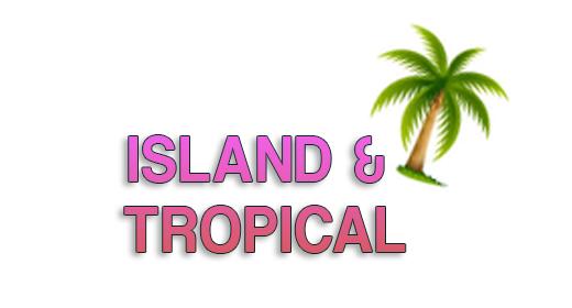 Island tropical music