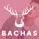 Bachas - Fashion eCommerce Bootstrap Template