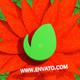 Flowers Logo Opener 4D