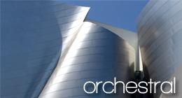 Orchestral / Symphonic