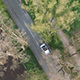 Aerial Footage of a Car Driving on a Tree Avenue