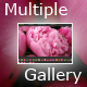 XML Autoplay Multiple Image Slide Show FV2 - ActiveDen Item for Sale