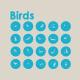 20 Birds icons