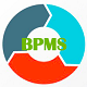 BPMS - Business Portfolio Management System
