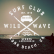 Summer Surfing Badges & Elements