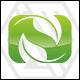 Nature Leaf - Letter N Logo
