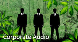 Corporate Audio