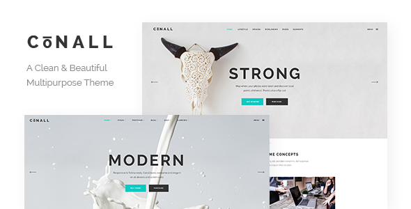Conall - A Clean & Beautiful Multipurpose Theme by Edge-Them ...