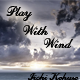 Play With Wind