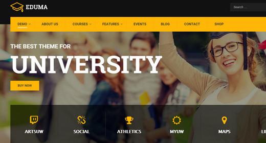 WordPress Theme for Education