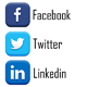 Social Publisher - Facebook, Twitter & LinkedIn Multiple Account