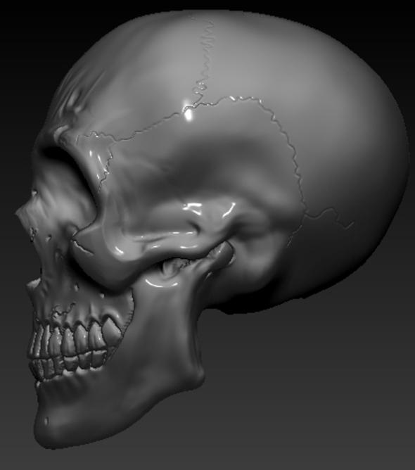 Skull Special 3D - 3DOcean Item for Sale