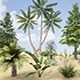 Plants Grass and Trees Pack