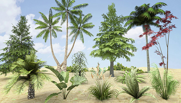Plants Grass and Trees Pack - 3DOcean Item for Sale