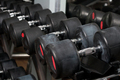 Dumbbells lined up in a fitness center