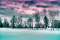Winter Scene HDR - PhotoDune Item for Sale