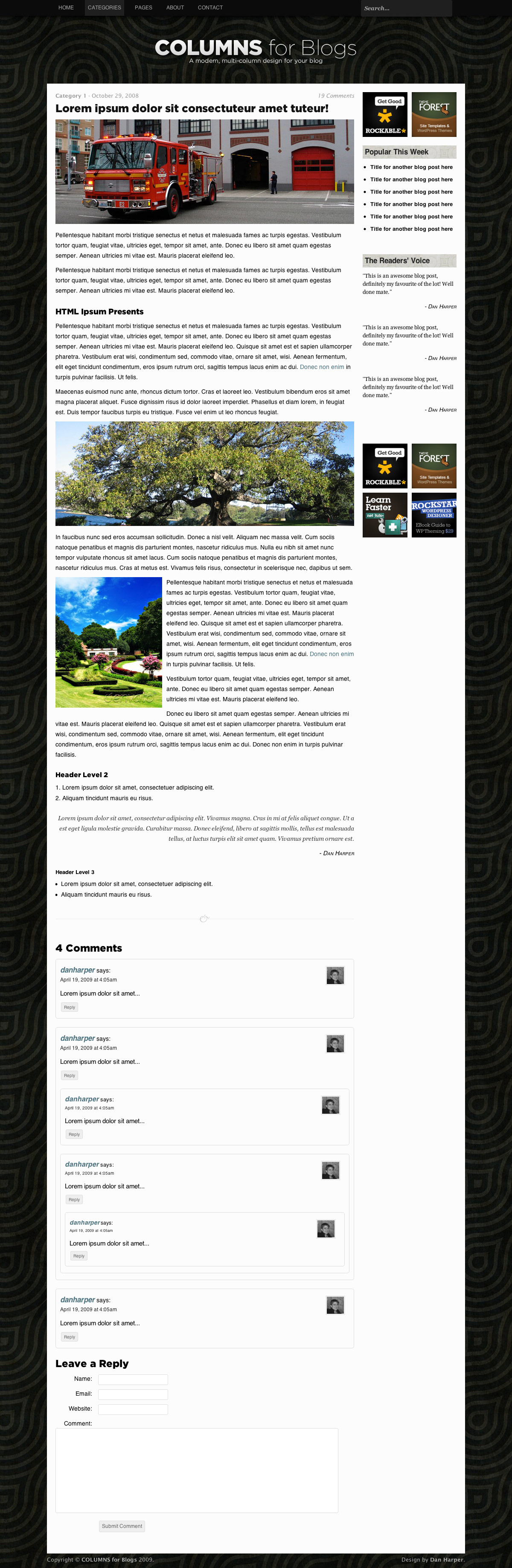 COLUMNS Blog Design - 2-column single post & comments page
