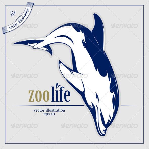 Dolphin Jump In Cartoon Vector Style