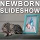 Kittens Lullaby - Baby Photo Album