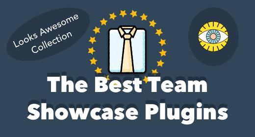 5 Best Team Showcase WordPress Plugins 2016