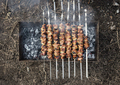 Appetizing fresh meat shish kebab on a wood coal
