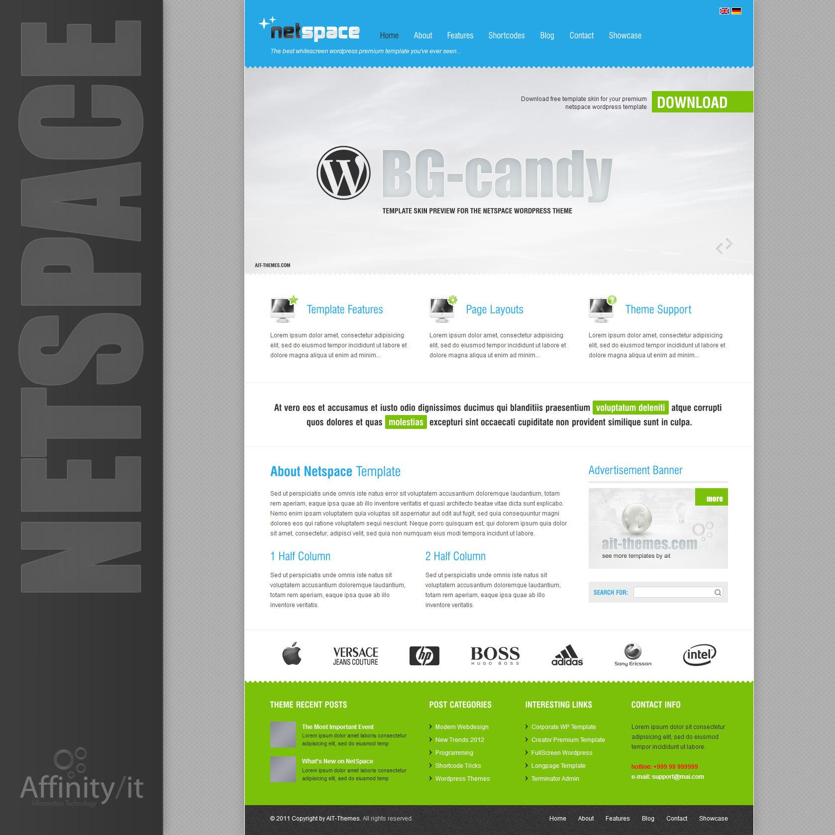 Netspace - Premium Wordpress Theme + Free Skins