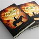 Cowboys Fast Guns Book Cover Template