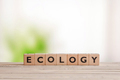 Ecology sign on a wooden desk