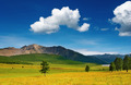 Mountain landscape - PhotoDune Item for Sale