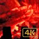 Fire Wood 02