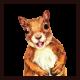 Squirrel92