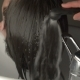 Barber Washes The Man's Hair