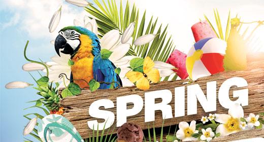 Spring Pary Flyer
