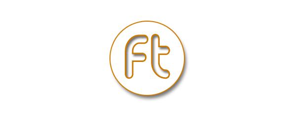 FlinTwin