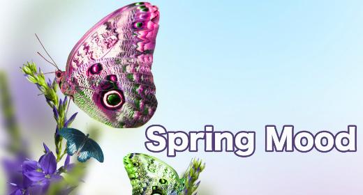 Spring Mood 2016