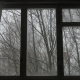 Wind Shakes The Trees And Snow Falling In Wooded Area Seen Through Window