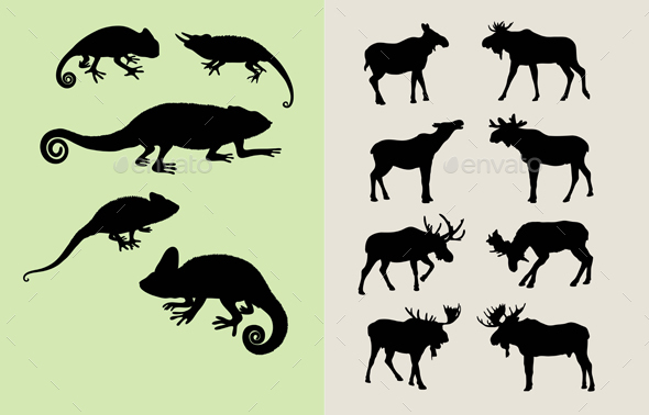Bull Moose and Lizard Silhouettes